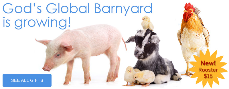 Global Barnyard